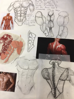 Student designs exploring a new take on the white shirt inspired by the human form.