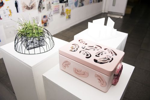 Two sculptural objects sitting atop white plinths. One is a pink box with flower patterns cut out of it. The other is a glass plant pot incased in a black wire dome.