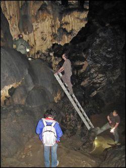 Professor Paul Pettitt is up a ladder in a cave marking a hand stencil
