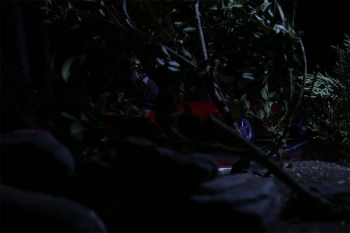 A model car, taken as a still from a stop motion animated film, has crashed into some bushes.