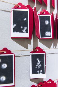 Hanging photographs in pink and black.