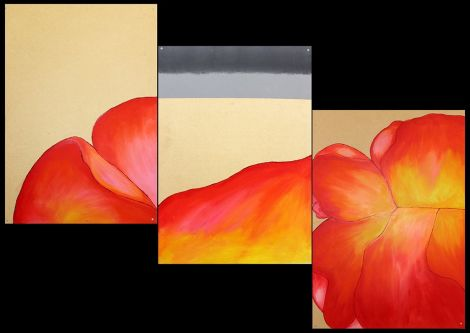 Drawings of red and yellow flower