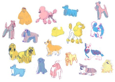 Dog illustrations by Anna Kluska.