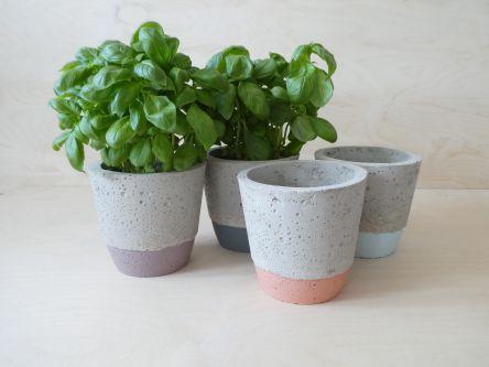 Four concrete plant pots, with plants in