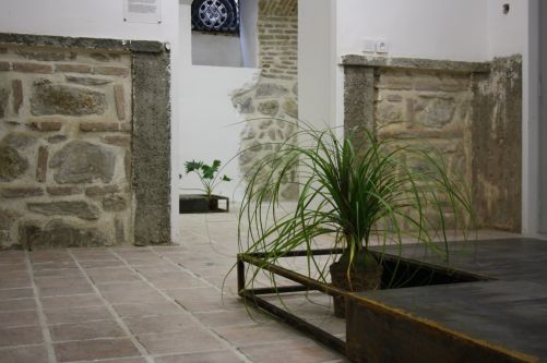 A compartmentalized metal box with two plants in, in a tiled courtyard