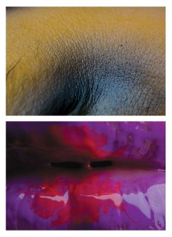 Photography work of extreme close ups of lips by Adam Barclay.