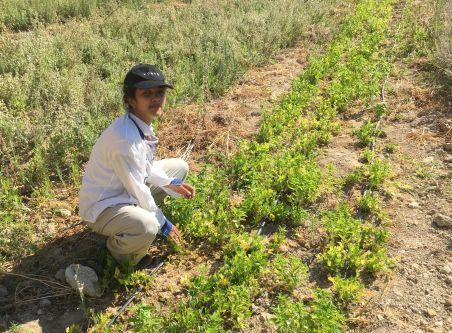 Mona in a field in Jordan