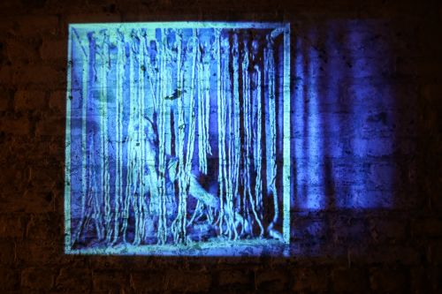 A projection of an image of a blue body