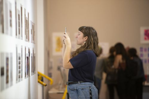 Person taking a photo at an exhibition.