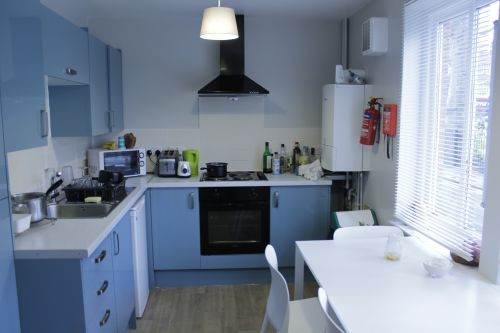 Shared kitchen paint light blue with fridge, kettle and toaster provided