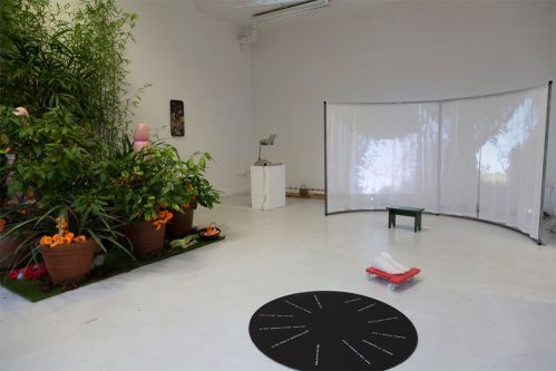 Interim show photo with video work, foot sculpture and installation featuring plants.