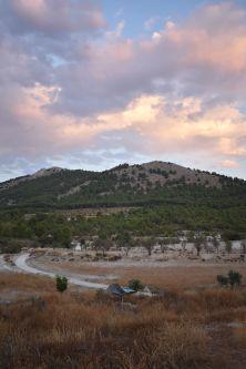 landscape of JOYA