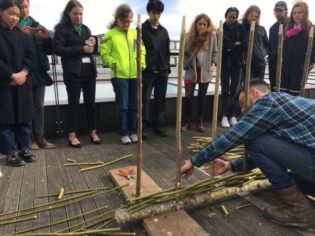 A person constructing a hurdle from stems of willow while other people watch
