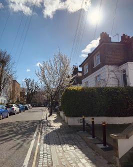 empty residential street