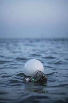 A white ball and green bottle floating in the sea