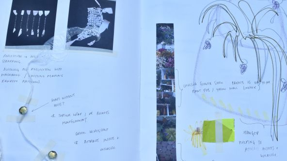 Millicent Sanders' sketch book close up