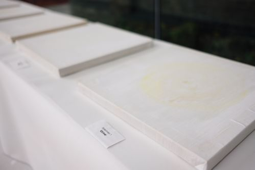 White paintings on canvas displayed flat on a plinth