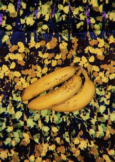 Collection of yellow fabrics with bananas on top