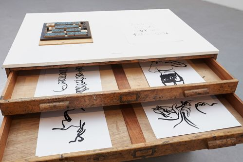 Chest of drawers containing series of prints by Shefali Wardell.