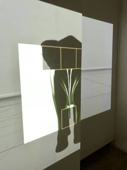 Image of student work projection as part of project