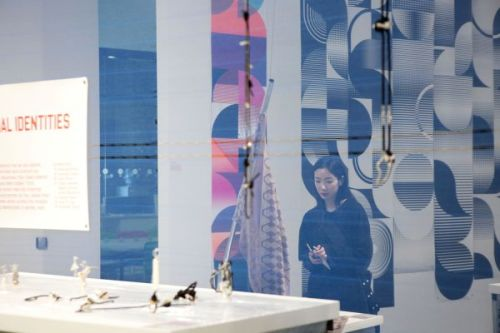 Photograph through a translucent screen of someone looking at artwork displayed on a table, abstract patterns hung on the wall behind them