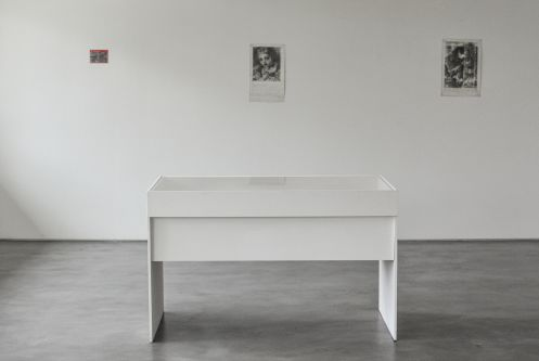 a cvitrine in a gallery space