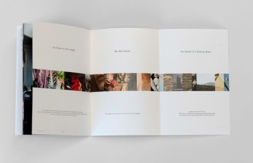Open-page spread of Perspective publication.