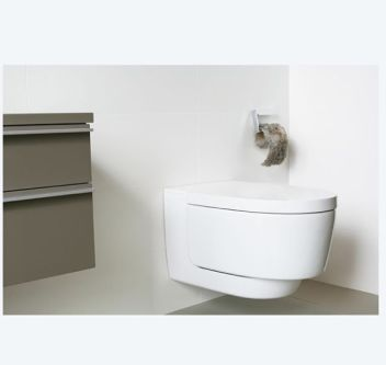 image of a contemporary looking toilet