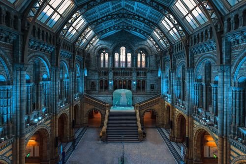 James Cox, Lilly Marshall, Daehwa Kim and Abdul Almehairi responded to the problem of plastic pollution in the ocean by creating an interactive experience in the form of a melting ice cube at the National History Museum in London. Sensors inserted into the installation enable visitors to step on projections of plastic bottles to make them disappear. The project, inspired by the work of Greenpeace, is designed to raise awareness about plastic pollution.