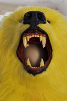 Yellow bear costume