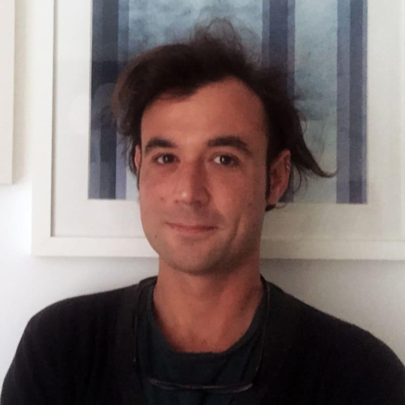 Luca M. Damiani