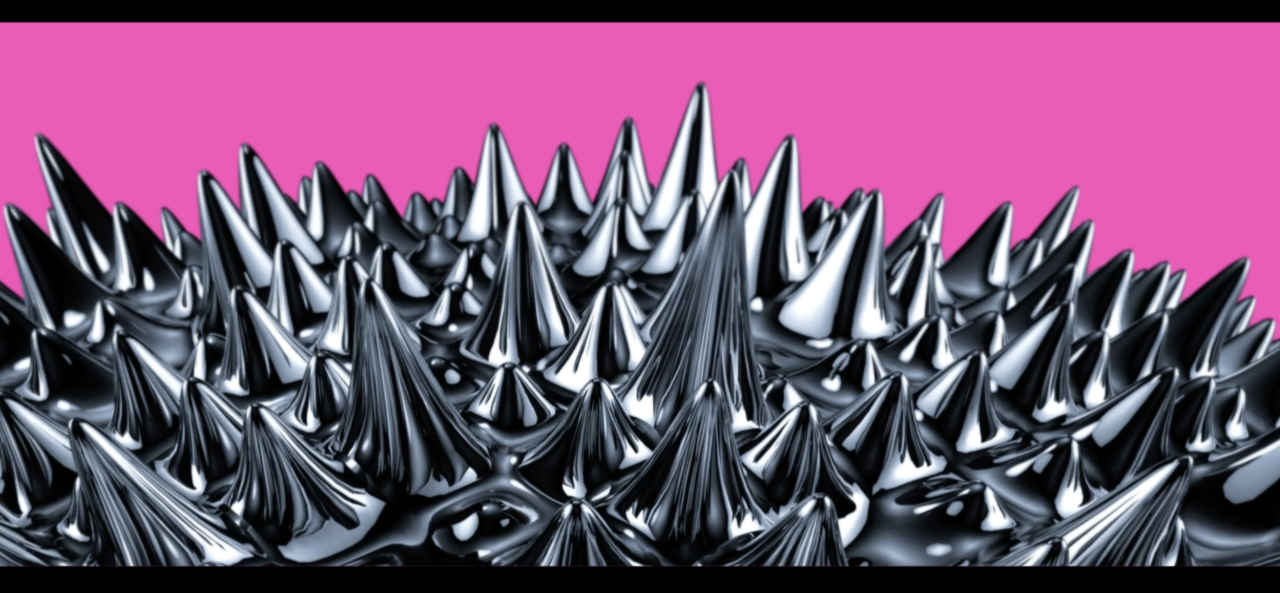 Soft silver spines on a bright pink background
