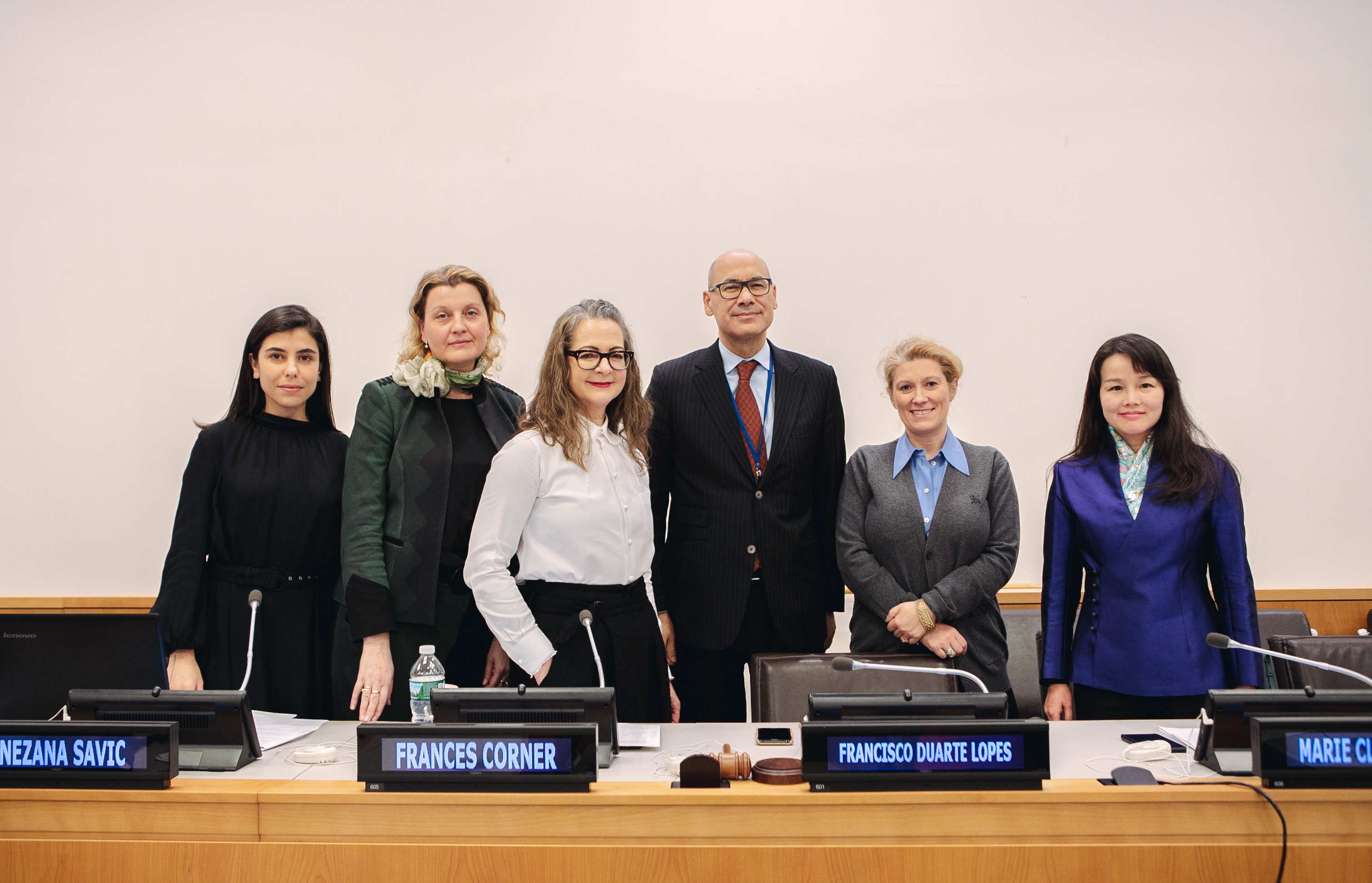 Professor Frances Corner and panelists and the UN