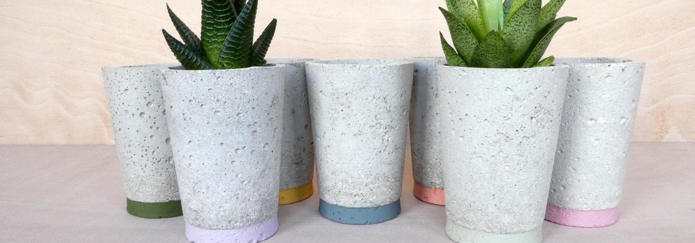 Five concrete plant pots, with plants in