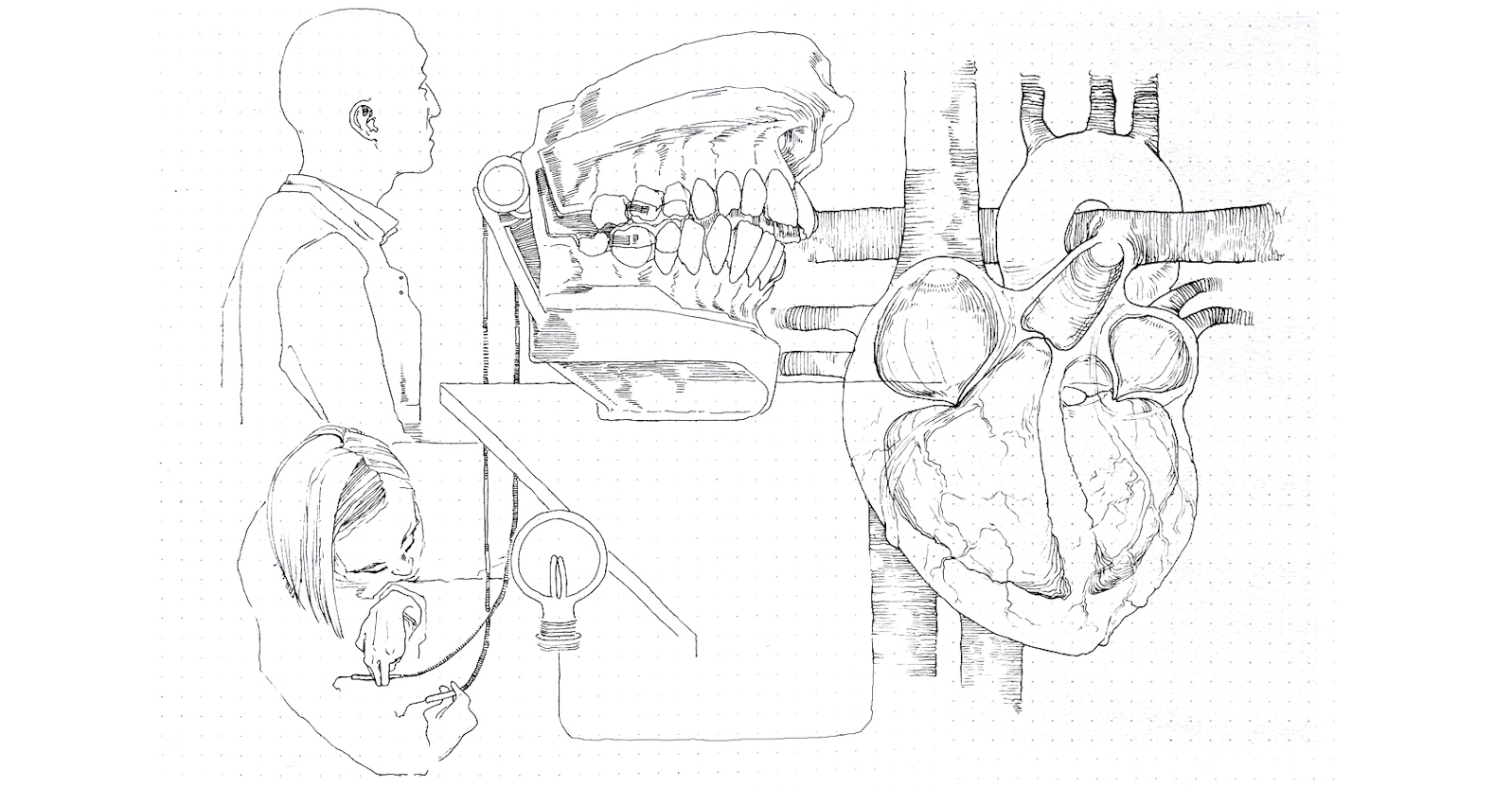 Stylised drawing of people with diagram of a heart and model of a jaw bone